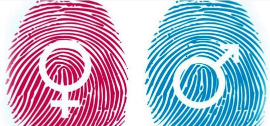 Última Hora | Abriram Novas Candidaturas aos Incentivos à Contratação